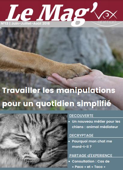 E-mag 13 Vox Animae: Travaillez les manipulations pour un quotidien simplifié
