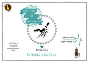 Romuald Deschodt Chiens réactifs et agressifs